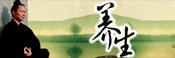 kungfu wudang